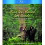 Blu-ray Tous Les Matins Du Monde {import} Novo Lacrado