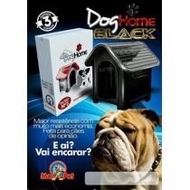 Casinha Plástico P/ Cachorro N 3 Porte Médio - Cor Preto