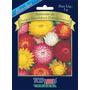 4500 Sementes Flor Sempre Viva Dobrada Sortida Frete Grátis