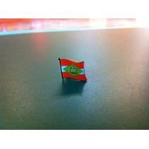 Pin Da Bandeira Do Estado De Santa Catarina