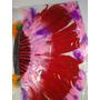 Cocar Indigena Adulto Pena Colorida Mede 40 X 40 Cm