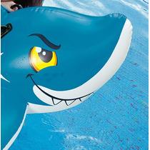 Tubarão Inflável P/ Piscinas, Nemo - Produto Importado