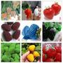 40 Sementes De Morangos Coloridos 9 Cores- Frete Grátis-muda