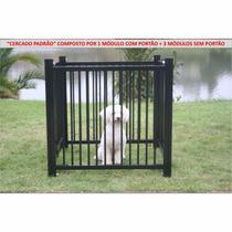 Cercado Casinha Cachorro Com Portão Animais Domésticos