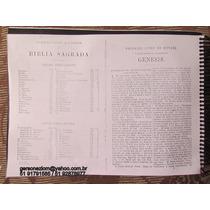 Bíblia Sagrada Traducção Brazileira -ano 1917- Cópia