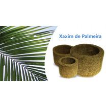 Kit 3 Vasos Xaxim De Palmeira P/ Orquídeas E Samambaias