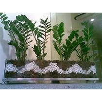 Vasos De Vidro Jardineira Incolor20x60com Rodinha De Silicon
