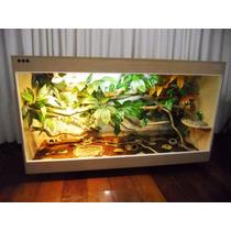 Terrário Para Iguana - Camaleão - Serpentes, Etc