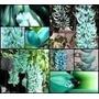 10 Sementes De Jade Azul