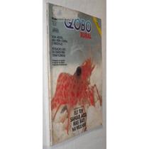 Globo Rural Açucar De Stevia Revista N.31 Abril 1988
