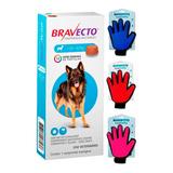 Bravecto Comprimido Para Cães De 20 A 40kg + 1 Luva
