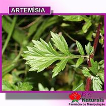 Chá De Artemísia P/ Cólica Intestinal, Cólica Menstrual- 30*