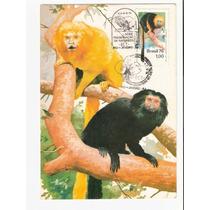Lindo Máximo Postal Rhm Max-45 - Preservação Da Natureza !