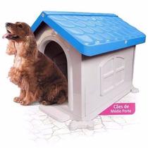 Casinha De Cachorro Plástico N° 3 Vermelho, Rosa E Azul