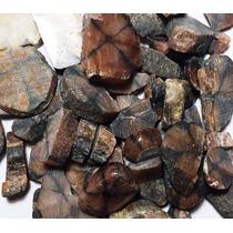 Pedra Da Cruz Quiastolita Unid. 2cm Gema Natural P/ Coleção