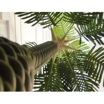 Planta Artificial Palmeira Pata De Elefante 1,40mt De Altura