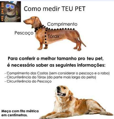 Roupa Pet Adidog Conjunto Blusa + Calça 04 Patas Pro Teu Pet