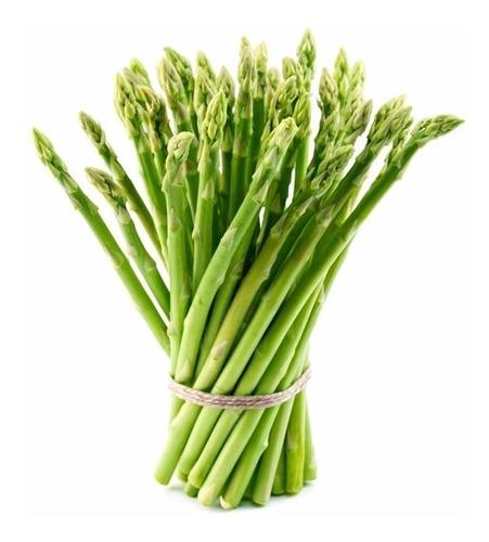 50 Sementes De Aspargo Verde # Envio Já