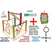 Kit Superior Calopsita Feliz Playground Colorido + Brinquedo