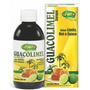 Xarope Guacolimel Unilife 200ml Fósforo Vitaminas B5 B6 B7 C