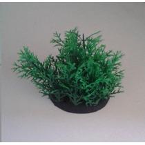 Planta Artificial P/ Aquários E Terrários 6cms - Cód.071072