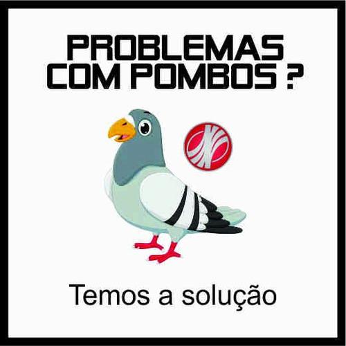 Espiculas Contra Pombos - Elimina E Não Fere ! Kit 10 Metros