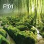 Fundo Fotográfico Tecido Tema Floresta ( 150 Cm X 150 Cm)