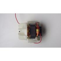 Motor De Secador 220v (frete Grátis)