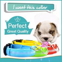 Acessório Coleira Para Cães C Led Pet Seu Cachorro Seguro