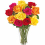6 Mudas De Rosas Naturais !!!