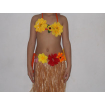 Fantasia Infantil Havaiana 10 A 11 Anos Carnaval Festa