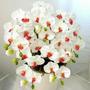 Sementes De Orquídea Borboleta Branca E Vermelha -10sementes