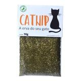 Catnip Erva De Gato Pura E Orgânica Com Frete Grátis - 10g