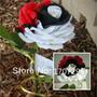 Sementes De Rosa Pérola - Exótica E Rara - 15 Sementes