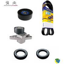 Kit Correia Alternador Poly V + Retentor Semi Eixo 206 207