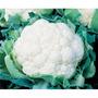 Sementes De Couve Flor Teresopolis Gigante Pcte C/ 100 Grama