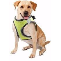 Peitoral De Segurança Acessório Cães Pet Shop Tamanho Gg