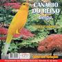 Cd -de Pássaros Canário -do Reino Belga * Reizinho*
