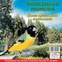 Cd Canto De Pássaros Pintassilgo Pinheiro Canto Oficial