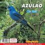 Cd Canto De Pássaros Azulão Céu Azul Canto Paraná
