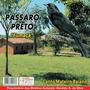 Cd Canto Pássaros - Pássaro Preto- Canto Mateiro Baiano