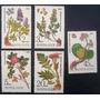 6743 Russia - Flores E Suas Raízes Completa Yvert Nº 5232/6