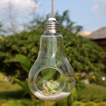 Vaso Suspenso Em Forma De Lâmpada De Vidro - Pronta Entrega