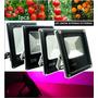 Painel Led Grow 100w Cultivo Indoor Hidroponia Full Spectrum