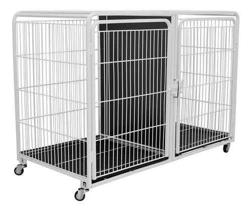 Canil Gaiola Modular Duplo Inferior Pet Shop Veterinária