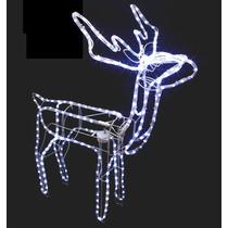 Rena De Led - Decoração De Natal Com Movimento - Macho