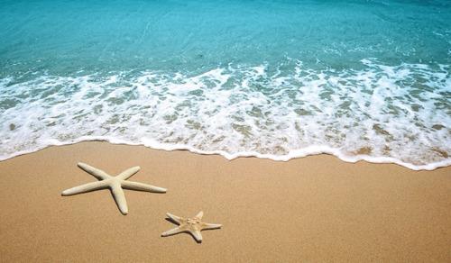Tapete Em Lona 250x150m Areia Da Praia 3d