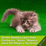 Grama Sintética Atóxica Higiênica Pets Cachorro Gato Répteis