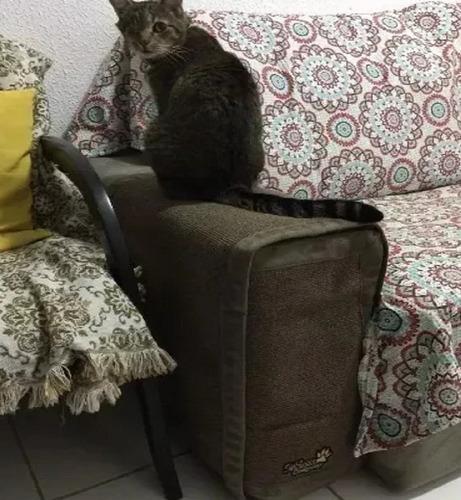 Arranhador E Protetor De Sofá Para Gatos