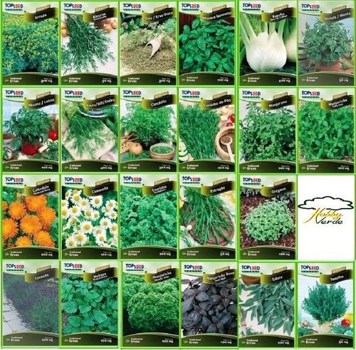 Sementes De Ervas Temperos E Plantas Medicinais - 12 Pacotes